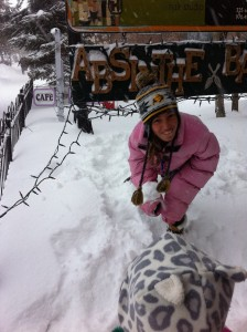 Ania vs. Snow leopard